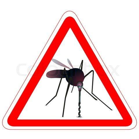 Комариний енцефаліт