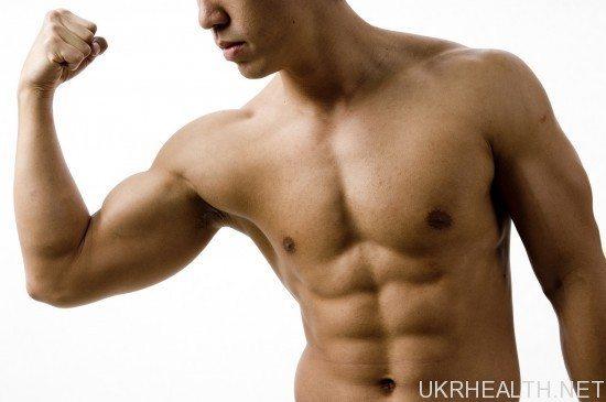 Як ростуть м'язи: частина II