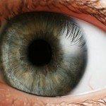 Учені змогли повернути зір сліпим