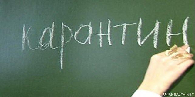 Грип закрив українські школи