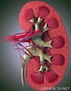 Лікування ниркового сольового діабету
