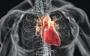 Пороки серця