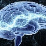 Мозок уміє думати на двох мовах одночасно