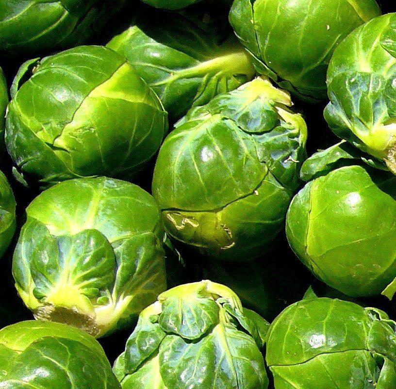 Брюссельская капуста борется с бесплодием