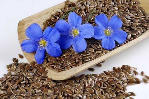лляне насіння