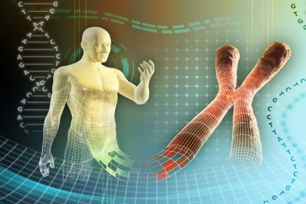 На що здатні гени: дивовижні факти про спадковість