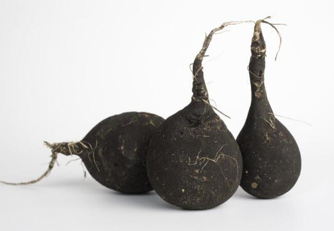 Чорна редька від зубного каменю