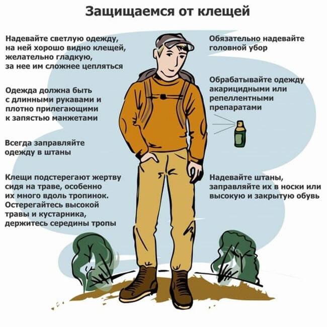 Захист від кліщів