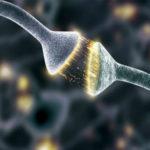 Як працює мозок людини - ТОП 5 найбільш загадкових функцій.