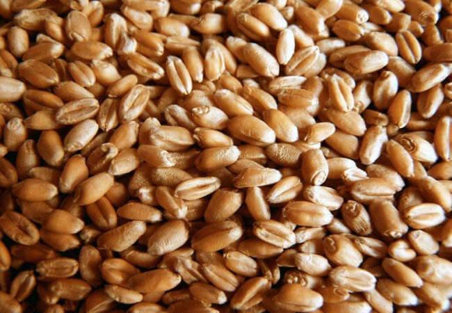 Цільне зерно
