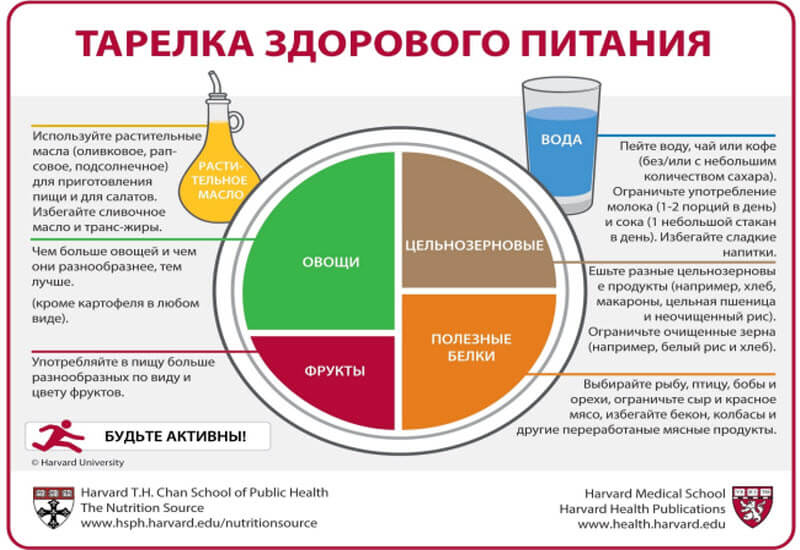 Healthy Eating Plate російською