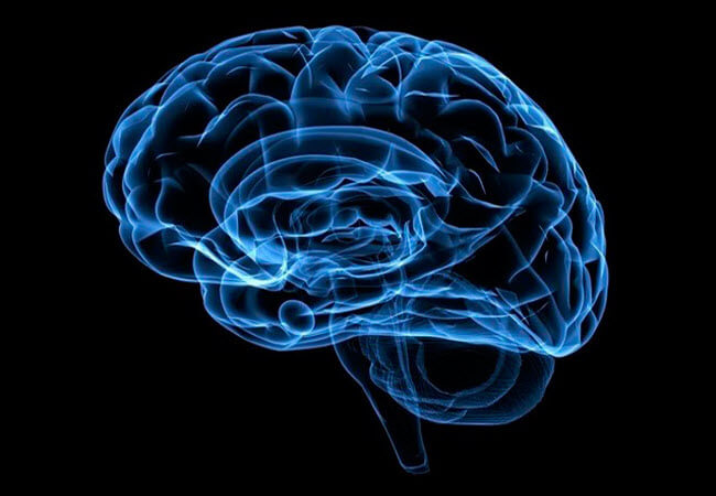 дивовижна здатність мозку