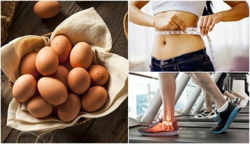 Курячі яйця