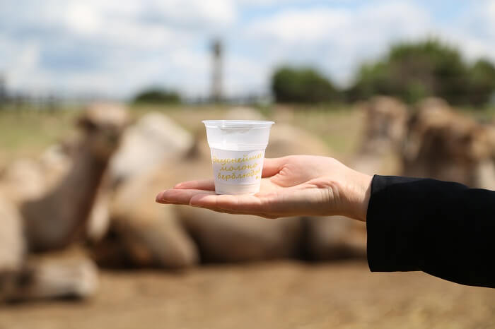 Верблюже молоко