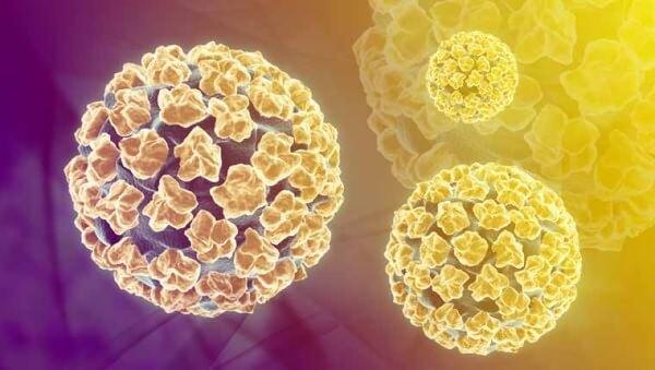 Вірус папіломи людини