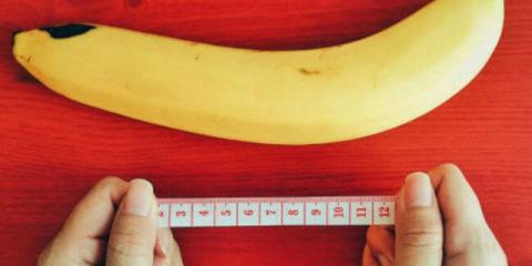Розмір пеніса