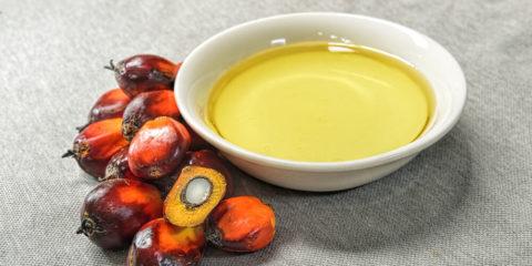 Пальмова олія