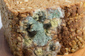 Хліб з цвіллю