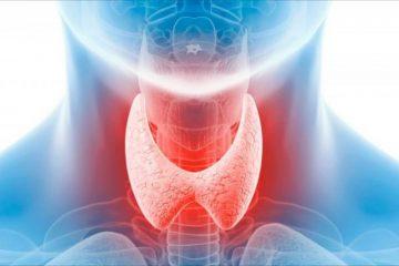Щитовидна залоза