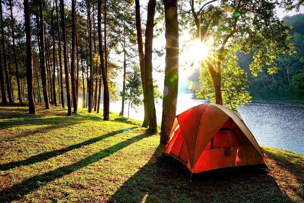 там вроде фото отдых на природе в лесу проснулся, добрым утром