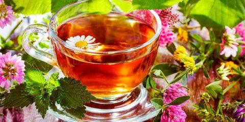 Чай з шавлії