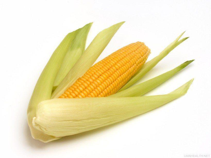 «Цариця полів» кукурудза