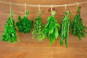 цукрознижувальні рослини