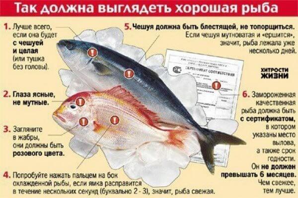 Як вибрати рибу