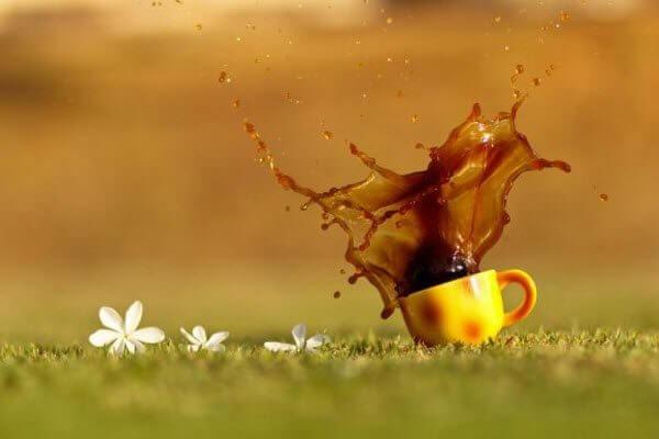Чай, кава